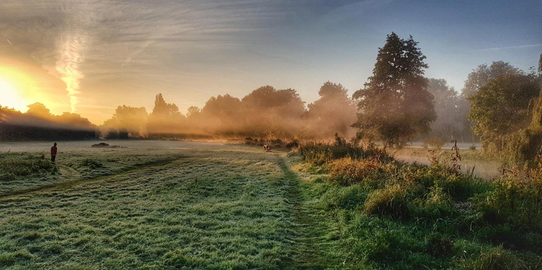 Falcon Meadow frosty morning